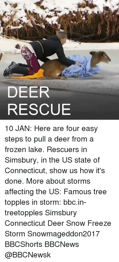 Deer, Frozen, and Memes: DEER  RESCUE 10 JAN: Here are four easy steps to pull a deer from a frozen lake. Rescuers in Simsbury, in the US state of Connecticut, show us how it's done. More about storms affecting the US: Famous tree topples in storm: bbc.in-treetopples Simsbury Connecticut Deer Snow Freeze Storm Snowmageddon2017 BBCShorts BBCNews @BBCNews​k