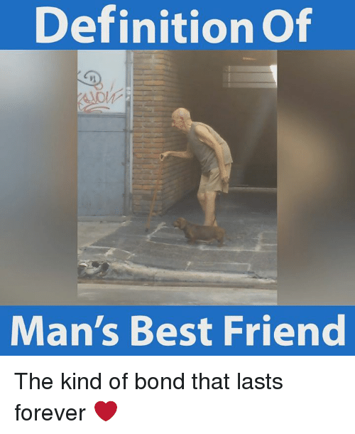 best friend: Definition of  Man's Best Friend The kind of bond that lasts forever ❤️