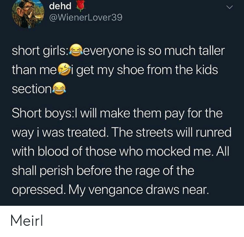 short girls: dehd  @WienerLover39  short girls:everyone is so much taller  than mei get my shoe from the kids  section  Short boys:l will make them pay for the  way i was treated. The streets will runred  with blood of those who mocked me. All  shall perish before the rage of the  opressed. My vengance draws near. Meirl