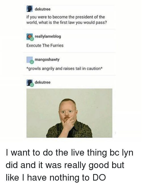 What Is The First: dekutree  if you were to become the president of the  world, what is the first law you would pass?  really lameblog  Execute The Furries  mangoshawty  *growls angrily and raises tail in caution  dekutree I want to do the live thing bc lyn did and it was really good but like I have nothing to DO