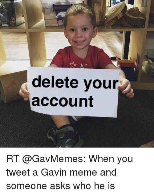 Memes, 🤖, and Gavin: delete your  account RT @GavMemes: When you tweet a Gavin meme and someone asks who he is