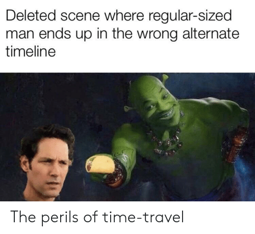 time travel: Deleted scene where regular-sized  man ends up in the wrong alternate  timeline The perils of time-travel