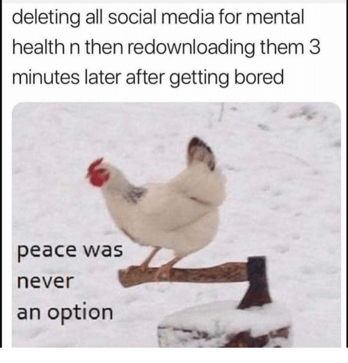 Bored, Funny, and Social Media: deleting all social media for mental  health n then redownloading them 3  minutes later after getting bored  peace was  never  an option