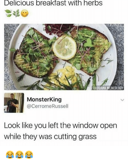 Dank, Breakfast, and Grass: Delicious breakfast with herbS  FB@DANK MEMEOLOGY  MonsterKing  @CerromeRussell  Look like you left the window open  while they was cutting grass 😂😂😂