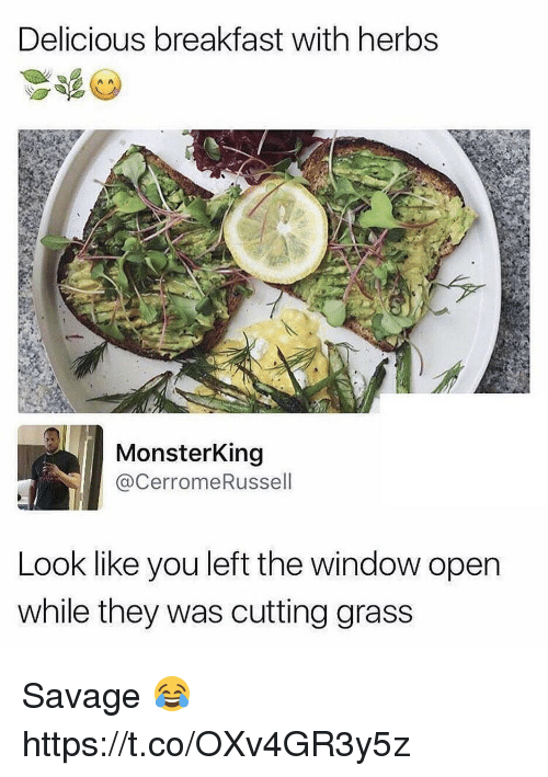 Savage, Breakfast, and Grass: Delicious breakfast with herbs  MonsterKing  @CerromeRussell  Look like you left the window open  while they was cutting grass Savage 😂 https://t.co/OXv4GR3y5z