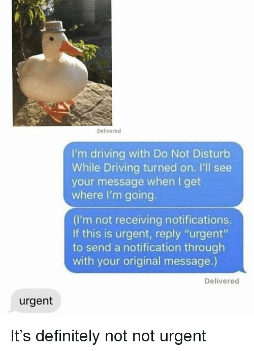 "Definitely, Driving, and Funny: Delivered  I'm driving with Do Not Disturb  While Driving turned on. I'll see  your message when I get  where I'm going.  (I'm not receiving notifications.  If this is urgent, reply ""urgent""  to send a notification through  with your original message.)  Delivered  urgent It's definitely not not urgent"