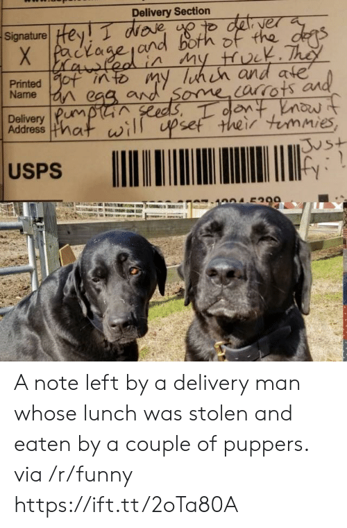 delivery man: Delivery Section  Signature! Hey T WDR  yer  Name  Delivery Pum  Address mat  ome orrots  set their immies  vs+  USPS A note left by a delivery man whose lunch was stolen and eaten by a couple of puppers. via /r/funny https://ift.tt/2oTa80A