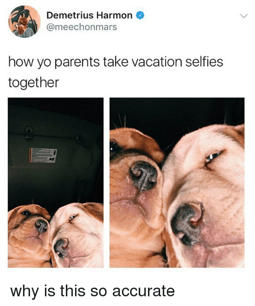 Parents, Yo, and Vacation: Demetrius Harmon  @meechonmars  how yo parents take vacation selfies  together why is this so accurate