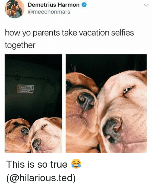 Funny, Parents, and Ted: Demetrius Harmon  @meechonmars  how yo parents take vacation selfies  together This is so true 😂 (@hilarious.ted)