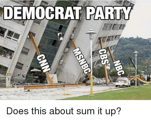 Memes, Party, and 🤖: DEMOCRAT PARTY Does this about sum it up?