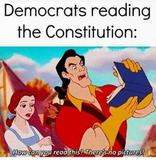 democrats reading the constitution how can you read this theres no pictures meme on sizzle. Black Bedroom Furniture Sets. Home Design Ideas