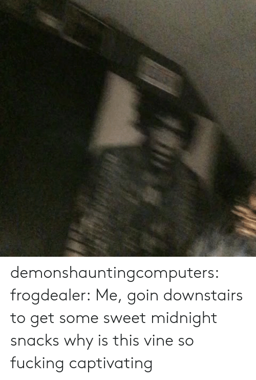 captivating: demonshauntingcomputers:  frogdealer: Me, goin downstairs to get some sweet midnight snacks why is this vine so fucking captivating