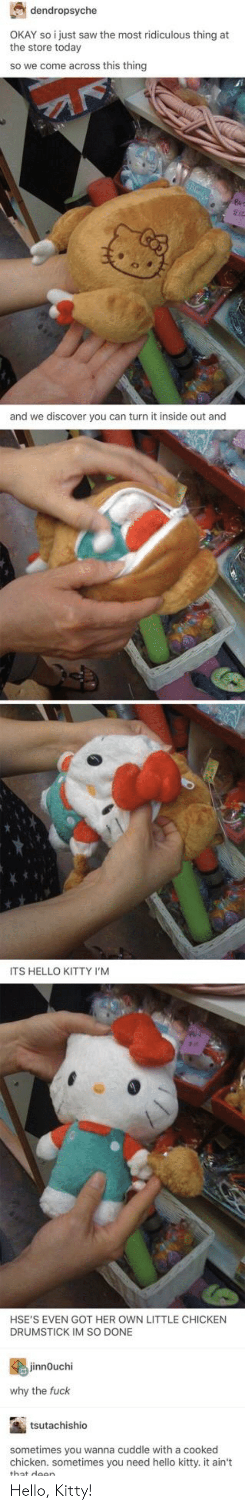 Hello Kitty: dendropsyche  OKAY so i just saw the most ridiculous thing at  the store today  so we come across this thingg  and we discover you can turn it inside out and  ITS HELLO KITTY I'M  HSE'S EVEN GOT HER OWN LITTLE CHICKEN  DRUMSTICK IM SO DONE  jinnOuchi  why the fuck  tsutachishio  sometimes you wanna cuddle with a cooked  chicken. sometimes you need hello kitty. it ain't  wllo kittyit an Hello, Kitty!