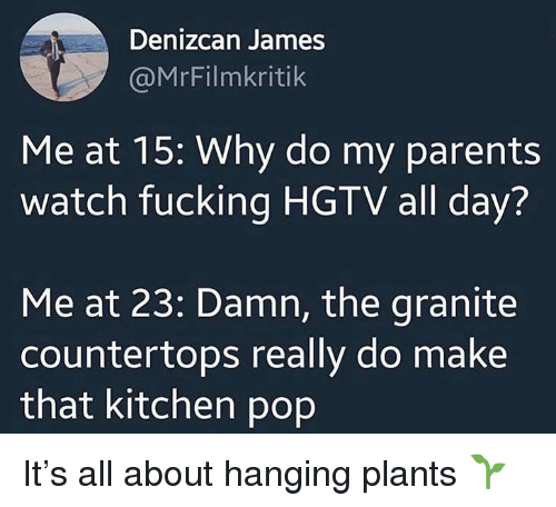 Hgtv: Denizcan James  @MrFilmkritik  Me at 15: Why do my parents  watch fucking HGTV all day?  Me at 23: Damn, the granite  countertops really do make  that kitchen pop It's all about hanging plants 🌱