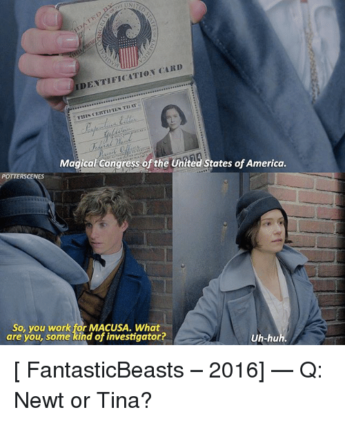 America, Memes, and Work: DENTIFICATION CARD  THIN CERTIFIES TIAT  Magical Congress of the United States of America.  POTTERSCENES  So, you work for MACUSA. What  are you, some kihd of investigator?  Uh-hu [ FantasticBeasts – 2016] — Q: Newt or Tina?