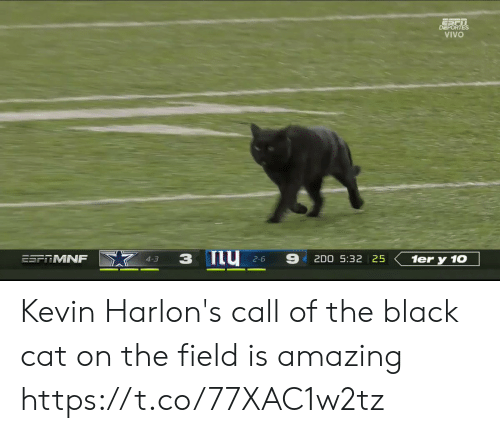vivo: DEPORTES  VIVO  ESFRMNF  2D0 5:32 25  1er y 10  4-3  2-6 Kevin Harlon's call of the black cat on the field is amazing https://t.co/77XAC1w2tz