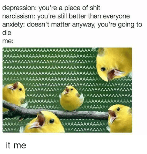 Your A Piece Of Shit: depression: you're a piece of shit  narcissism: you're still better than everyone  anxiety: doesn't matter anyway, you're going to  die  me:  AA  AA it me