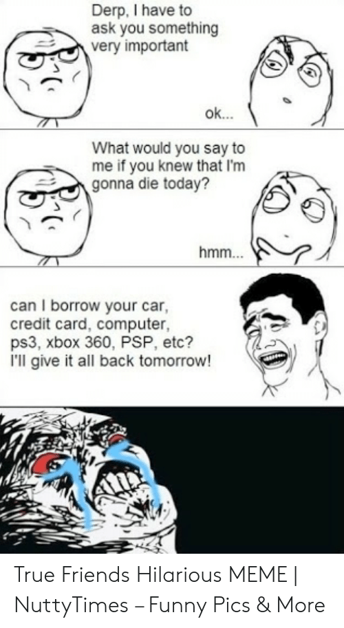 True Friends Meme: Derp, I have to  ask you something  very important  ok  What would you say to  me if you knew that I'm  gonna die today?  hmm  can I borrow your car,  credit card, computer,  ps3, xbox 360, PSP, etc?  I'll give it all back tomorrow! True Friends Hilarious MEME   NuttyTimes – Funny Pics & More