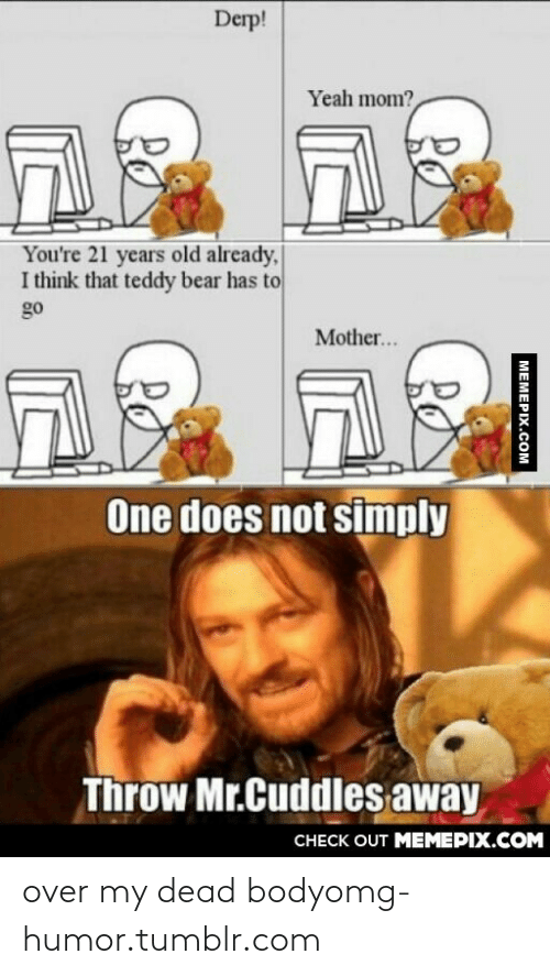 over my dead body: Derp!  Yeah mom?  You're 21 years old already,  I think that teddy bear has to  go  Mother...  One does not simply  Throw Mr.Cuddles away  CНECK OUT MEMЕРIX.COM  MEMEPIX.COM over my dead bodyomg-humor.tumblr.com