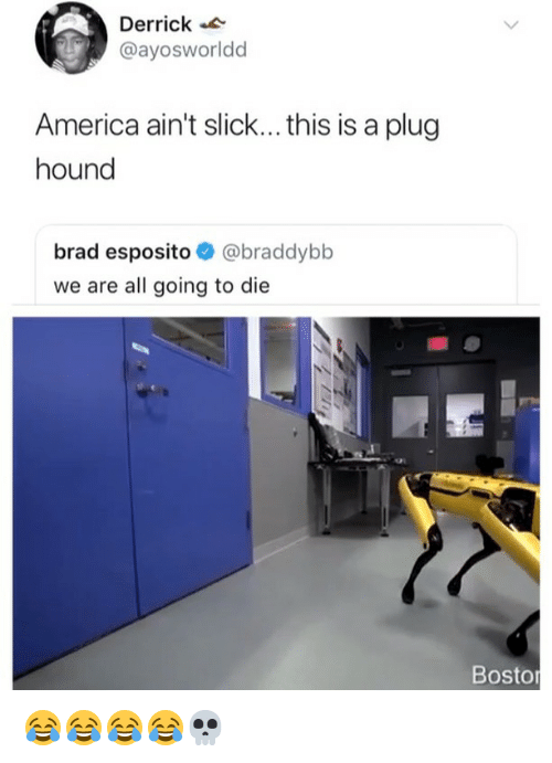 America, Slick, and Girl Memes: Derrick  @ayosworldd  America ain't slick... this is a plug  hound  brad esposito @braddybb  we are all going to die  Bostor 😂😂😂😂💀
