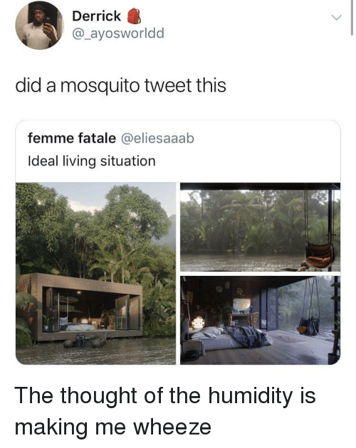 wheeze: Derrick  @_ayosworldd  did a mosquito tweet this  femme fatale @eliesaaab  Ideal living situation The thought of the humidity is making me wheeze