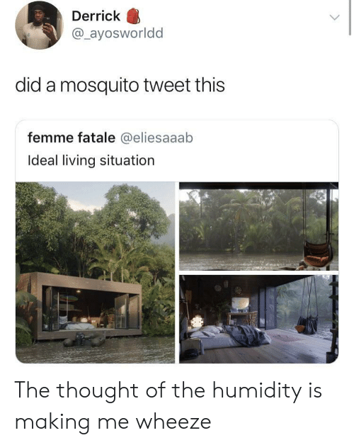 mosquito: Derrick  @ayosworldd  did a mosquito tweet this  femme fatale @eliesaaab  Ideal living situation The thought of the humidity is making me wheeze