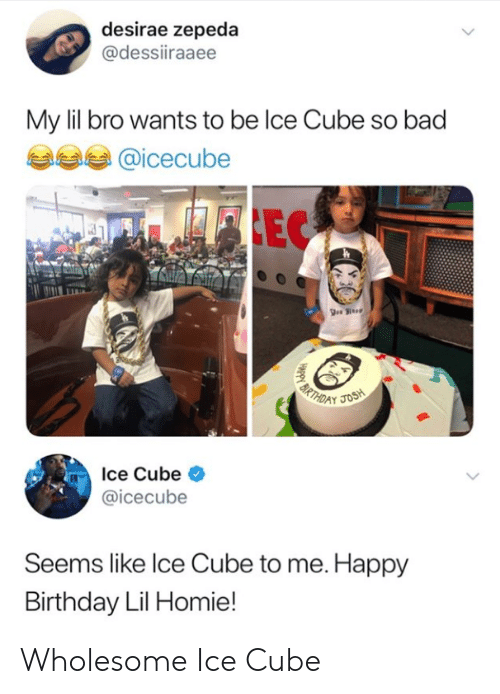 Ice Cube: desirae zepeda  @dessiiraaee  My lil bro wants to be lce Cube so bad  @icecube  Ice Cube <  @icecube  Seems like lce Cube to me. Happy  Birthday Lil Homie! Wholesome Ice Cube