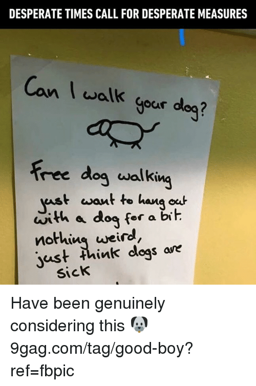 9gag, Dank, and Desperate: DESPERATE TIMES CALL FOR DESPERATE MEASURES  Canwalk  Can I walk gour deg?  Free dog walking  t want to hana oc  ast wou  with a dog for a bit  nothins weird  just think dogs ave  SicK Have been genuinely considering this 🐶 9gag.com/tag/good-boy?ref=fbpic
