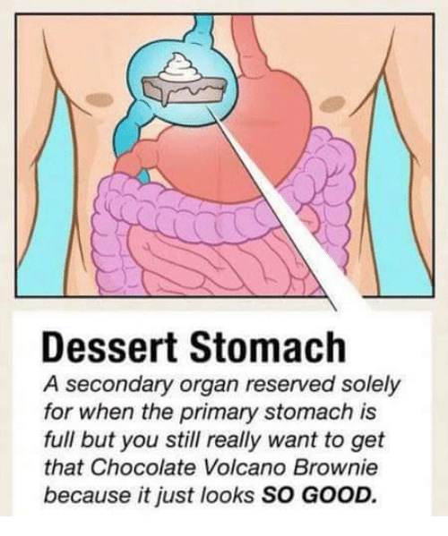Organizing: Dessert Stomach  A secondary organ reserved solely  for when the primary stomach is  full but you still really want to get  that Chocolate Volcano Brownie  because it just looks SO GOOD.