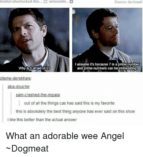 aba: destiel-Sherlocked-the... Wincestie..  Source: da-howel  I assume it's because 7 is a prime number  and prime numbers can be intimidating  Why is 6 afraid of 7?  oiteme-derekhale:  aba-douche.  sam-crashed-the-impala  out of all the things cas has said this is my favorite  this is absolutely the best thing anyone has ever said on this show  l like this better than the actual answer What an adorable wee Angel   ~Dogmeat