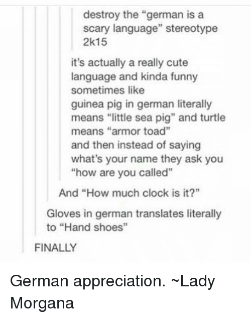 """Pigly: destroy the """"german is a  scary language"""" stereotype  2k15  it's actually a really cute  language and kinda funny  sometimes like  guinea pig in german literally  means """"little sea pig"""" and turtle  means """"armor toad""""  and then instead of saying  what's your name they ask you  how are you called""""  And """"How much clock is it?""""  Gloves in german translates literally  to """"Hand shoes""""  FINALLY German appreciation. ~Lady Morgana"""