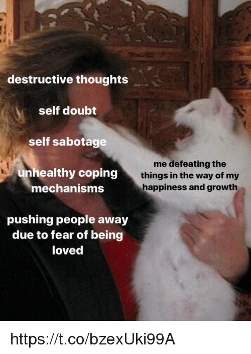 Memes, Doubt, and Fear: destructive thoughts  self doubt  self sabotage  unhealthy coping  mechanisms  me defeating the  things in the way of my  happiness and growth  pushing people away  due to fear of being  loved https://t.co/bzexUki99A