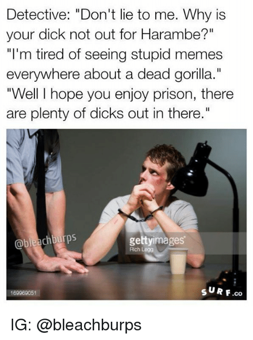 """Stupid Memes: Detective: """"Don't lie to me. Why is  your dick not out for Harambe?""""  """"I'm tired of seeing stupid memes  everywhere about a dead gorilla.""""  """"Well I hope you enjoy prison, there  are plenty of dicks out in there.""""  chburps  gettyimages  Rich Legg  s UR F.co  169969051 IG: @bleachburps"""