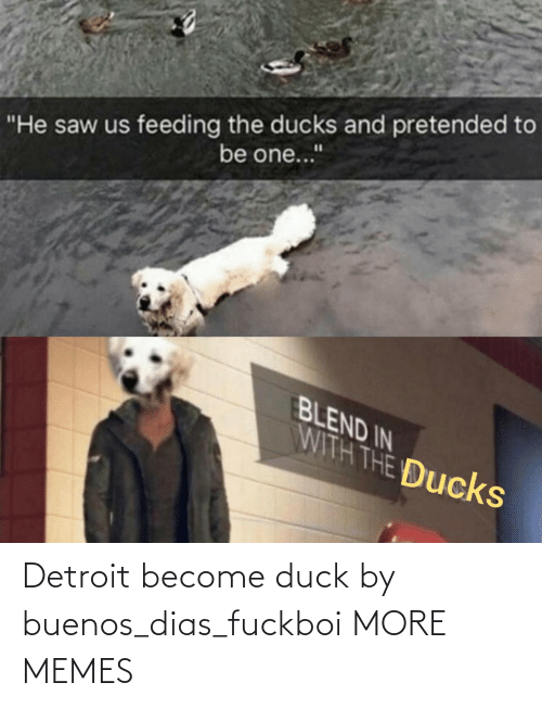 Duck: Detroit become duck by buenos_dias_fuckboi MORE MEMES