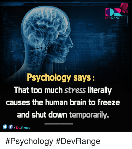 Thats Too Much: DEV  RANGE  Psychology says:  That too much stress literally  causes the human brain to freeze  and shut down temporarily.  f DEVRANGE #Psychology #DevRange
