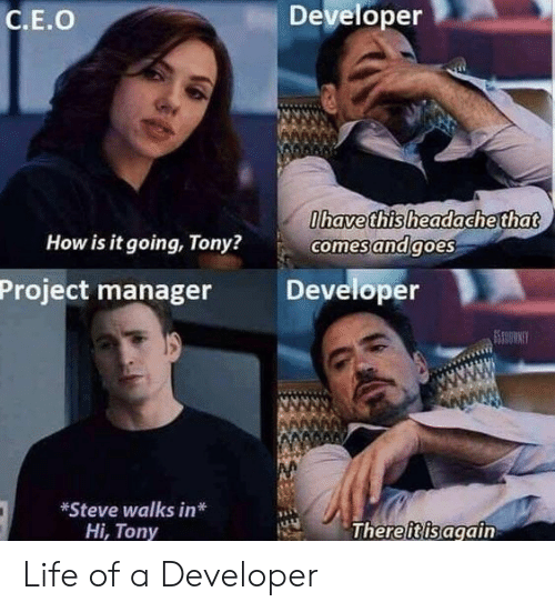 Life Of A: Developer  C.E.O  havethisheadache that  How is it going, Tony?  comesandgoes  Project manager Developer  *Steve walks in*  Hi, Tony  Thereiisagain Life of a Developer