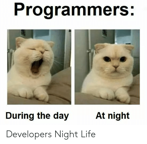 Developers: Developers Night Life