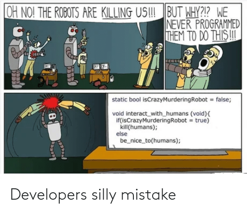 Silly,  Mistake, and Developers: Developers silly mistake