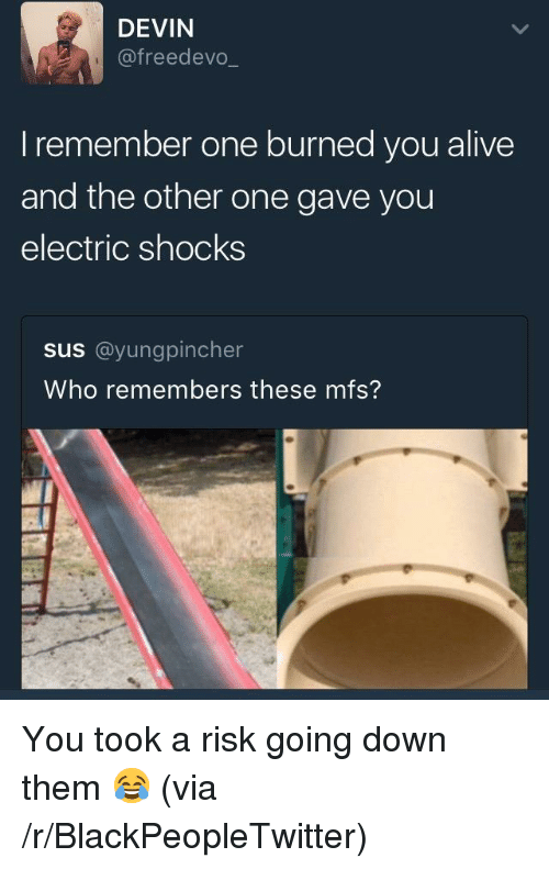 Alive, Blackpeopletwitter, and Who: DEVIN  @freedevo  I remember one burned you alive  and the other one gave you  electric shocks  sus @yungpincher  Who remembers these mfs? <p>You took a risk going down them 😂 (via /r/BlackPeopleTwitter)</p>