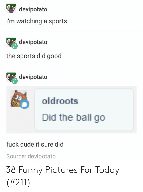 Pictures For: devipotato  i'm watching a sports  devipotato  the sports did good  devipotato  oldroots  Did the ball go  fuck dude it sure did  Source: devipotato  CO  COn 38 Funny Pictures For Today (#211)
