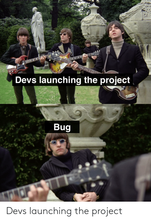 Programmer Humor: Devs launching the project