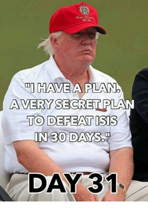 Sodding: DI HAVE  A PLANO  AVERY SECRET PLAN  TO DEFEAT ISIS  IN 30 DAY  SOD  DAY 31