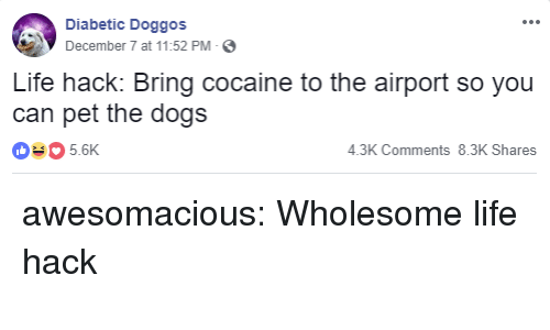 Diabetic: Diabetic Doggos  December 7 at 11:52 PM-  Life hack: Bring cocaine to the airport so you  can pet the dogs  035.6K  4.3K Comments 8.3K Shares awesomacious:  Wholesome life hack