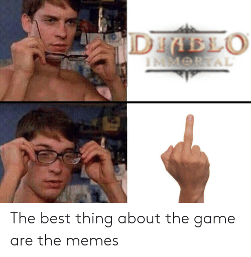 diablo: DIABLO The best thing about the game are the memes