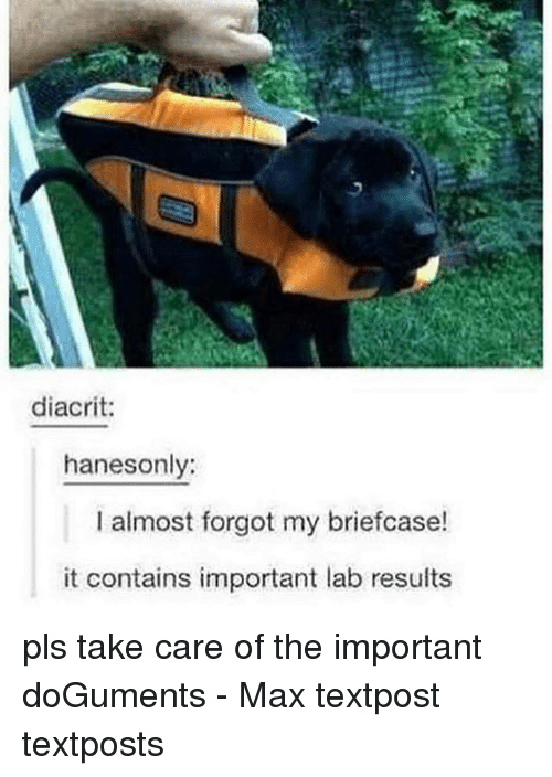 Memes, 🤖, and Take Care: diacrit:  hanesonly:  I almost forgot my briefcase!  it contains important lab results pls take care of the important doGuments - Max textpost textposts