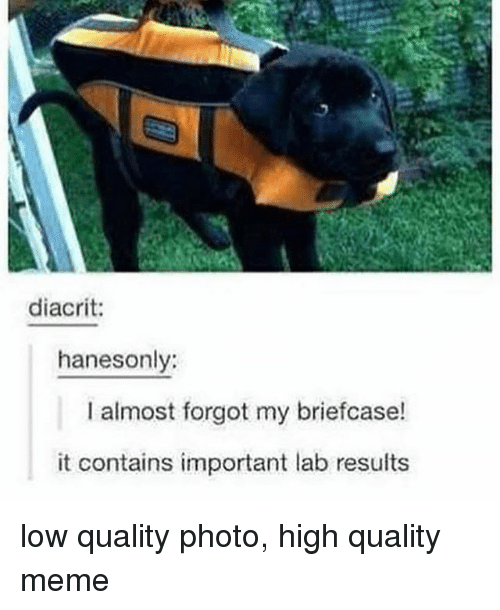 Quality Meme: diacrit:  hanesonly:  I almost forgot my briefcase!  it contains important lab results low quality photo, high quality meme