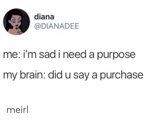 Im Sad: diana  @DIANADEE  me: i'm sad i need a purpose  my brain: did u say a purchase meirl