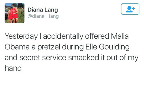 secret service: Diana Lang  @diana_lang  Yesterday l accidentally offered Malia  Obama a pretzel during Elle Goulding  and secret service smacked it out of my  hand