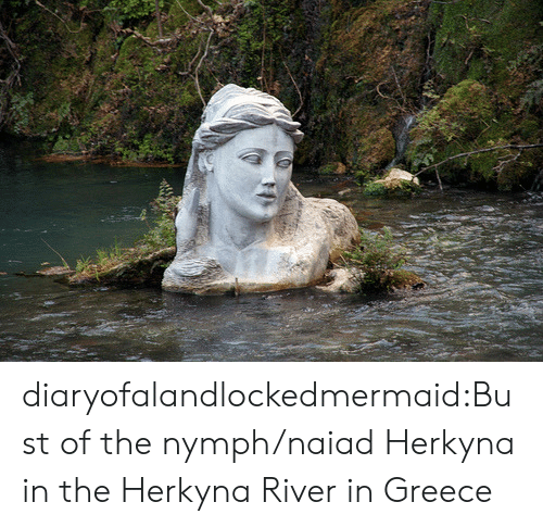 Greece: diaryofalandlockedmermaid:Bust of the nymph/naiad Herkyna in the Herkyna River in Greece