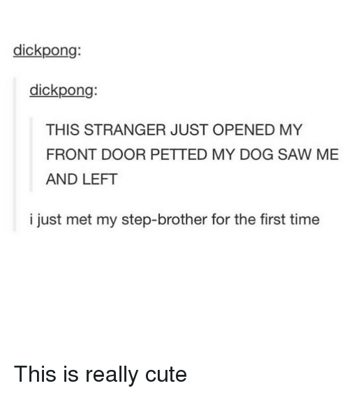 Step Brothers: dick pong:  dick pong:  THIS STRANGER JUST OPENED MY  FRONT DOOR PETTED MY DOG SAW ME  AND LEFT  i just met my step-brother for the first time This is really cute